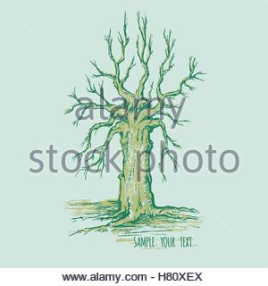 300x320 Dry Tree Without Leaves With Sketch Grass Stock Photo 126156241