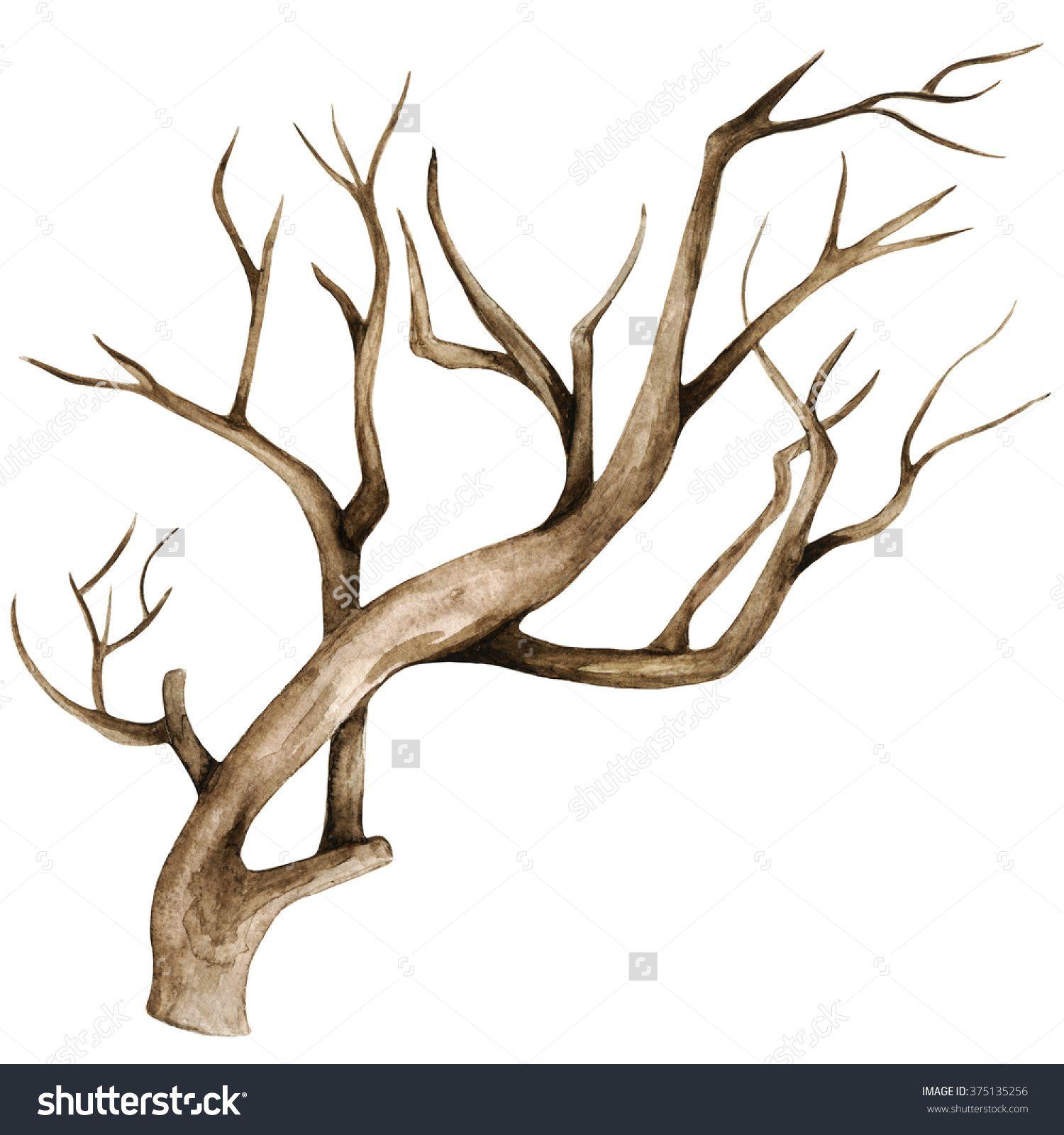 1500x1600 Watercolor Dry Tree, Branch, Bare Tree, Twig, Bough Closeup