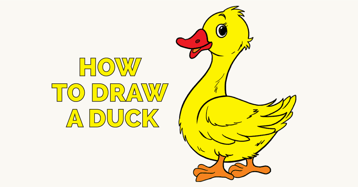 1200x628 How To Draw A Duck In A Few Easy Steps Easy Drawing Guides