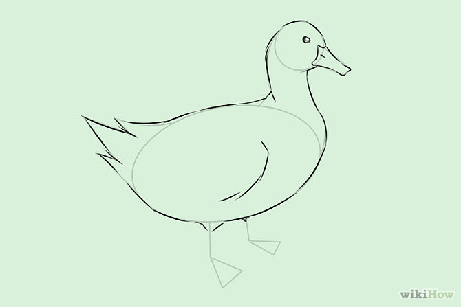 670x447 Draw Ducks