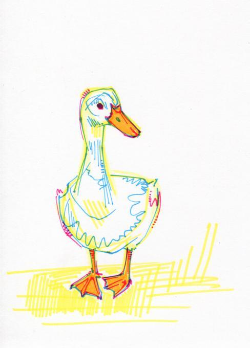 488x680 Duck Drawing. Nature. Drawings. Pictures. Drawings Ideas For Kids