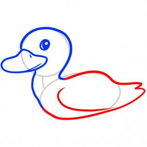 302x302 How To Draw How To Draw A Duck For Kids