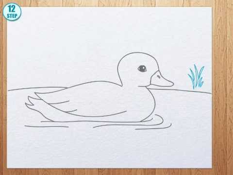 480x360 How To Draw A Duck