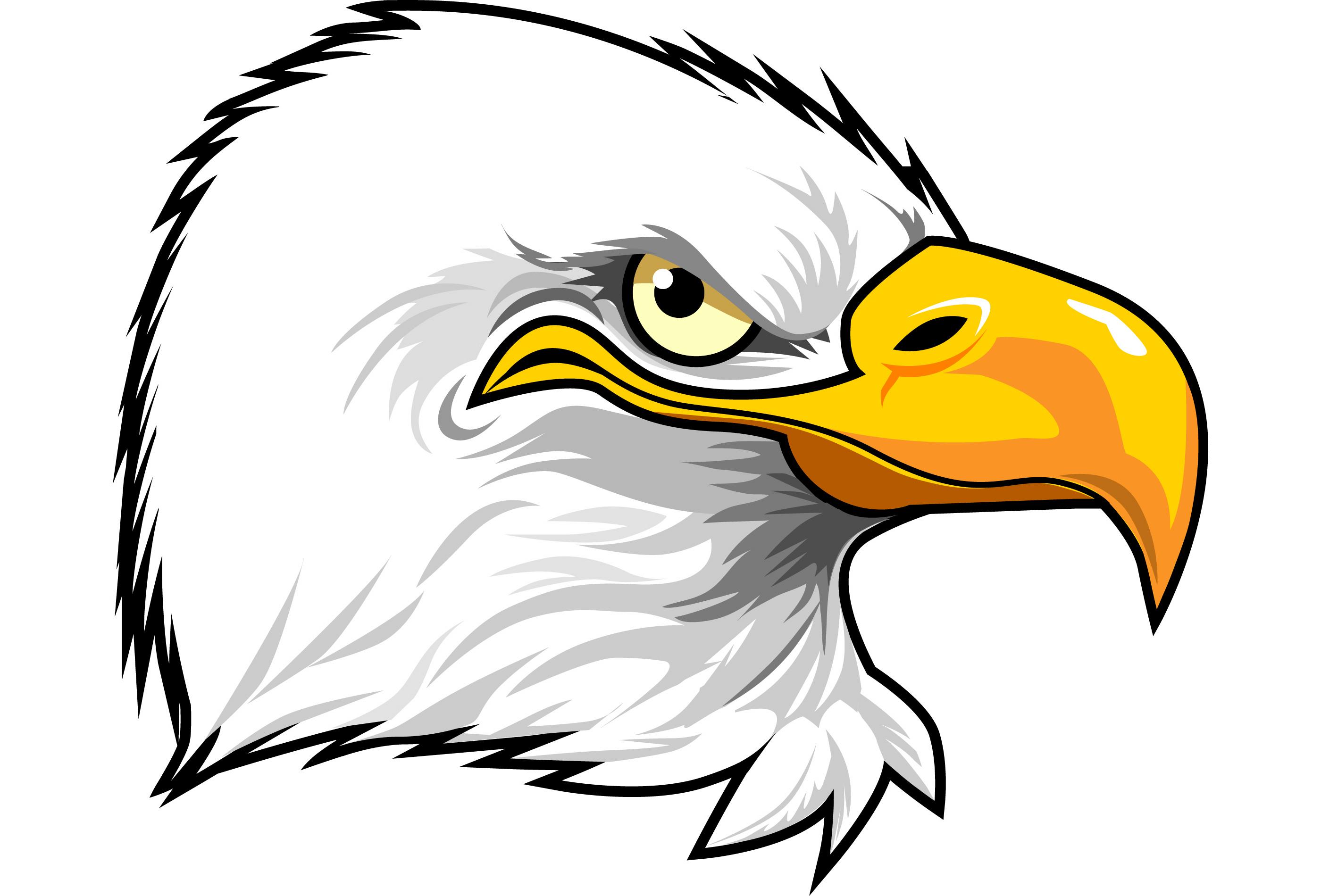 2800x1900 Cartoon Eagle Drawing Drawn Eagle Cartoon