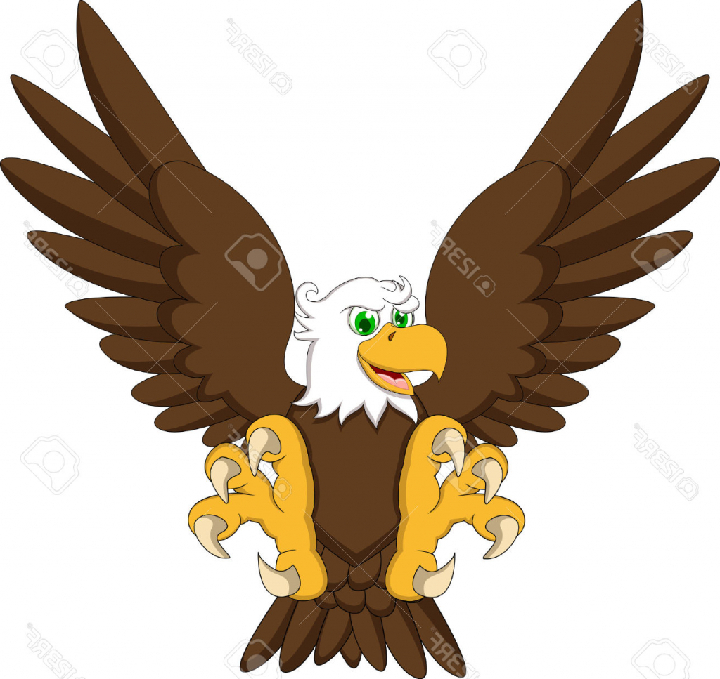 1024x967 Cartoon Eagle Drawing Eagle Cartoon Drawing Cartoon Eagle Stock