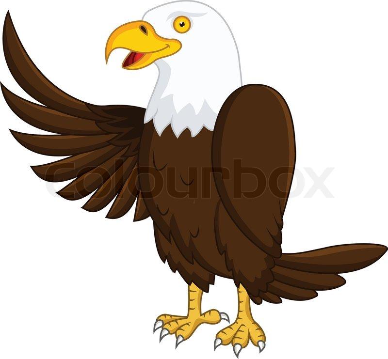 800x741 Eagle Cartoon Stock Vector Colourbox