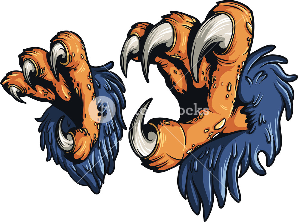 1000x743 Vector Eagle Claws Royalty Free Stock Image