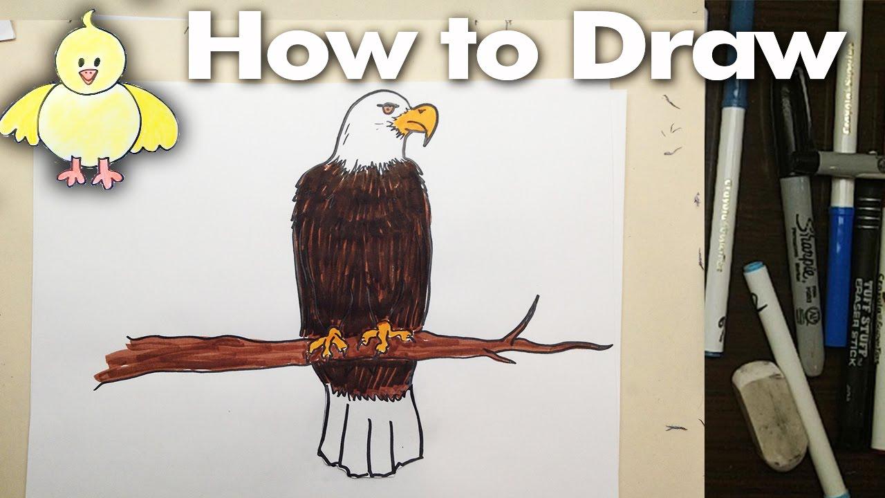 1280x720 How To Draw A Cartoon Eagle Step By Step