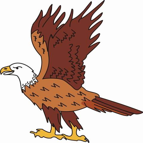 Amazing 480x480 Eagle Coloring Pages For Kids To Color And Print
