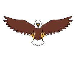 Eagle Drawing Simple At Getdrawings Free Download