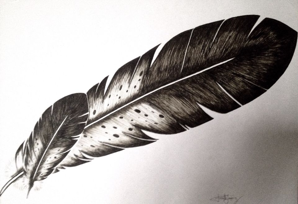 960x656 Eagle Feathers Drawing By Priscilla Lopez Feathers