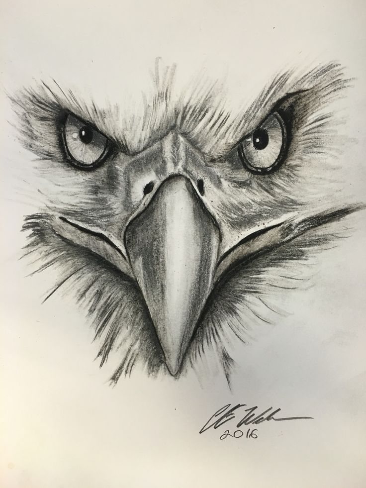 736x981 17 best my style images on pinterest eagle tattoos animal