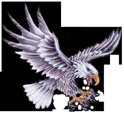Eagle Tattoo Drawing At GetDrawings.com