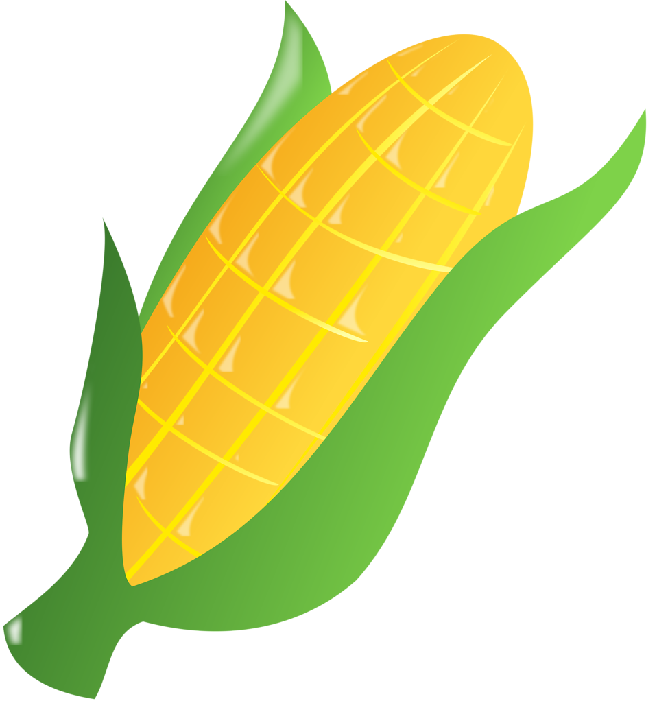 ear of corn drawing at getdrawings com free for personal use ear rh getdrawings com ear of corn clipart free Pineapple Clip Art