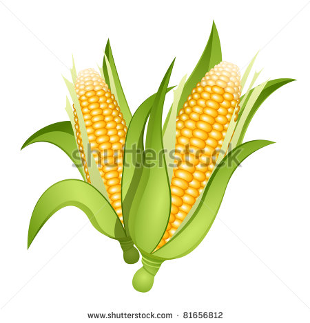 450x470 Corn Free Vector For Free Download About (81) Free Vector In Ai