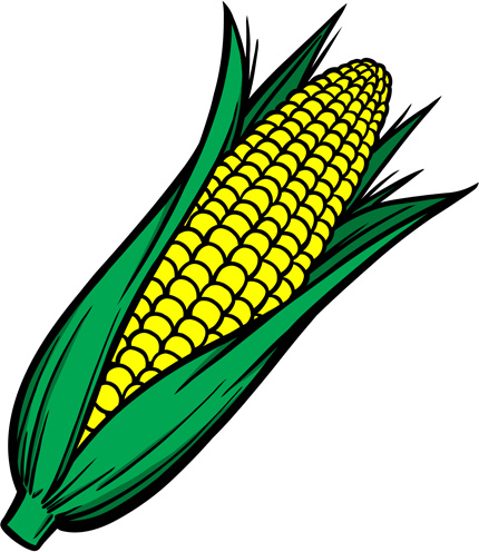ear of corn drawing at getdrawings com free for personal use ear rh getdrawings com Cantaloupe Clip Art ear of corn clipart black and white