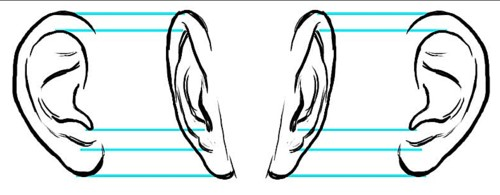 500x195 Art Now And Then Drawing And Painting The Human Ear