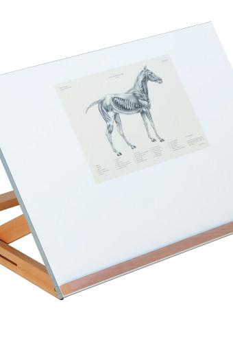 340x510 Cappelletto Drawing Amp Art Board