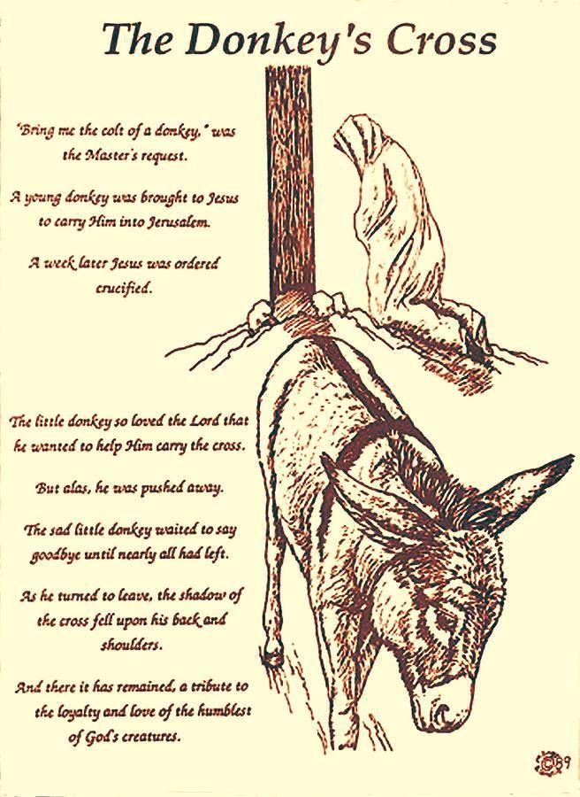 656x900 The Donkey's Cross A Sweet Story Of Jesus. Inspirational Quotes