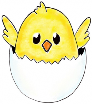 300x340 How To Draw A Baby Chick In An Egg Shell For Easter Drawing