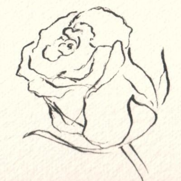 600x600 The Art Of Drawing Flowers