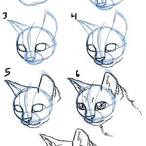 300x300 Adult Cat Face Drawing Cat Face Drawing On Face. Simple Cat Face
