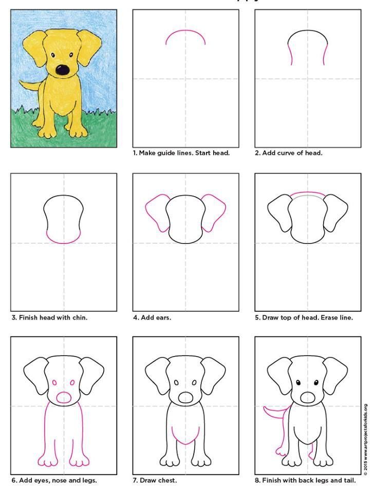 730x960 How To Draw A Puppy Dog. How To Draw Animals Draw