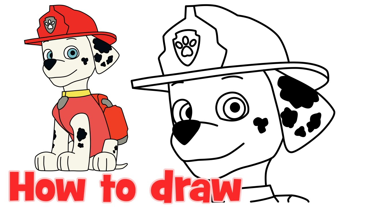 1280x720 How To Draw Marshall Paw Patrol Characters Step By Step Easy