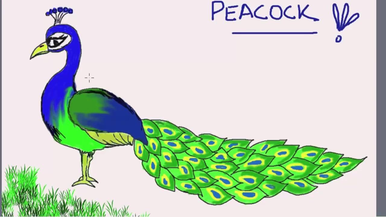 Easy Drawing Of Peacock at GetDrawings | Free download