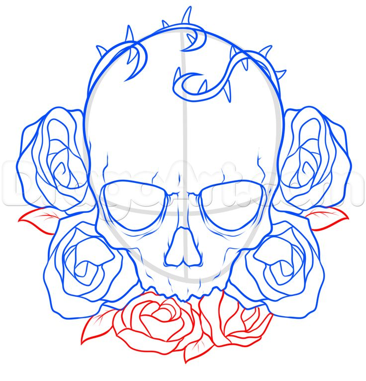736x766 Pictures Skull Drawings Step By Step,