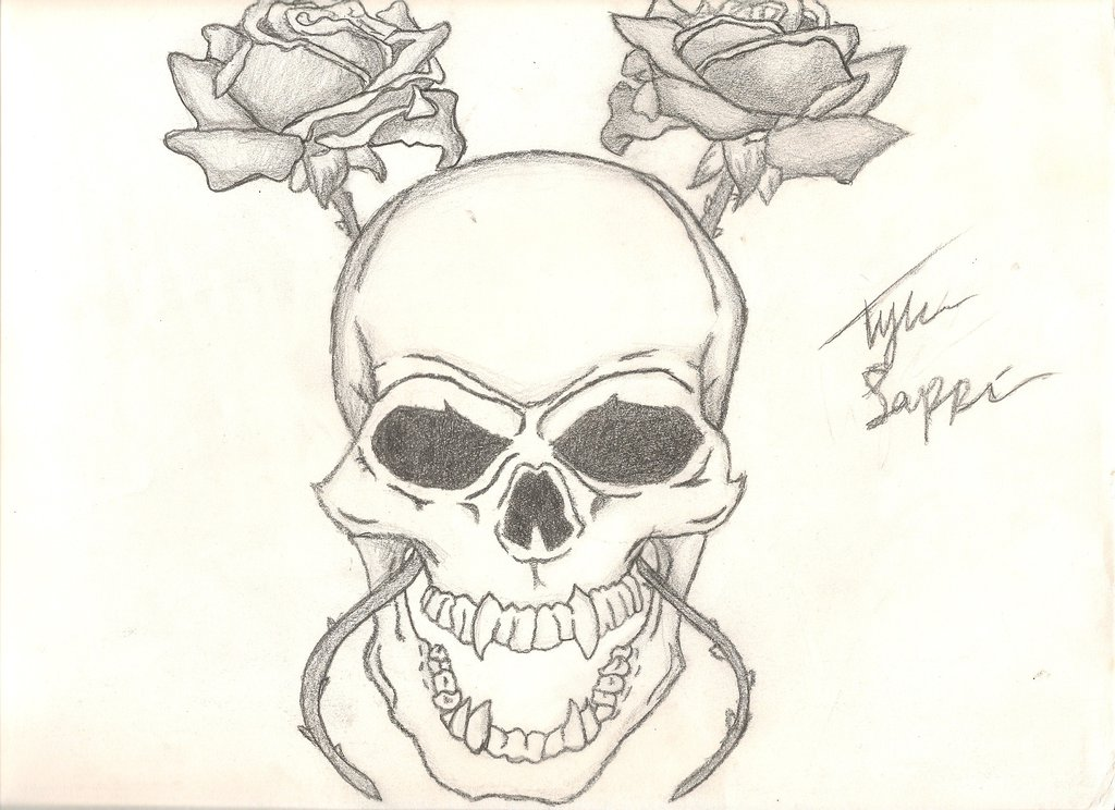 1024x744 Skull And Rose Drawing! By Iamcourier