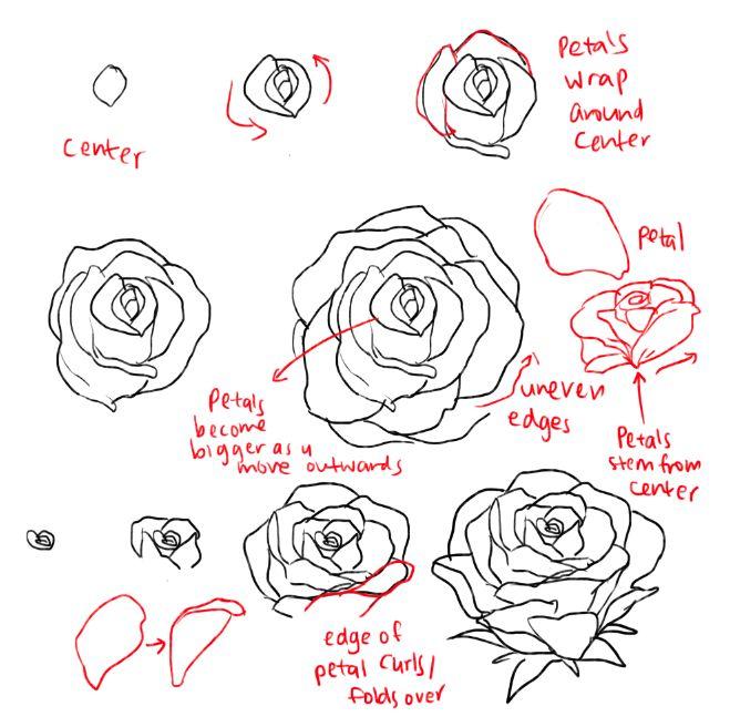 Easy Flower Drawing Tutorials at GetDrawings | Free download