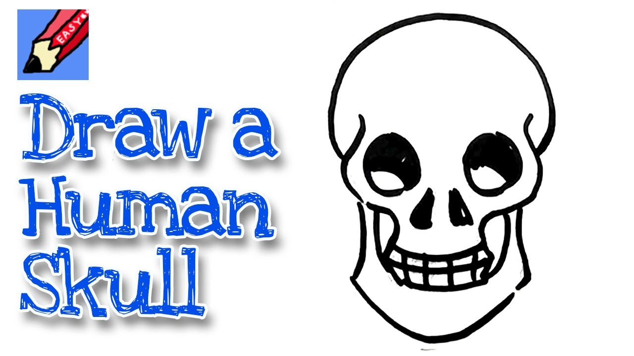 1280x720 How To Draw A Human Skull