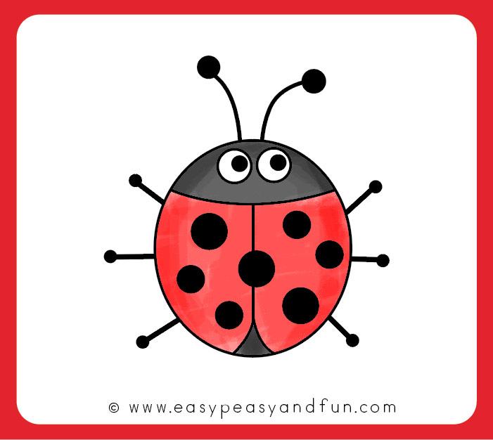 701x626 Color Your Ladybug Drawing