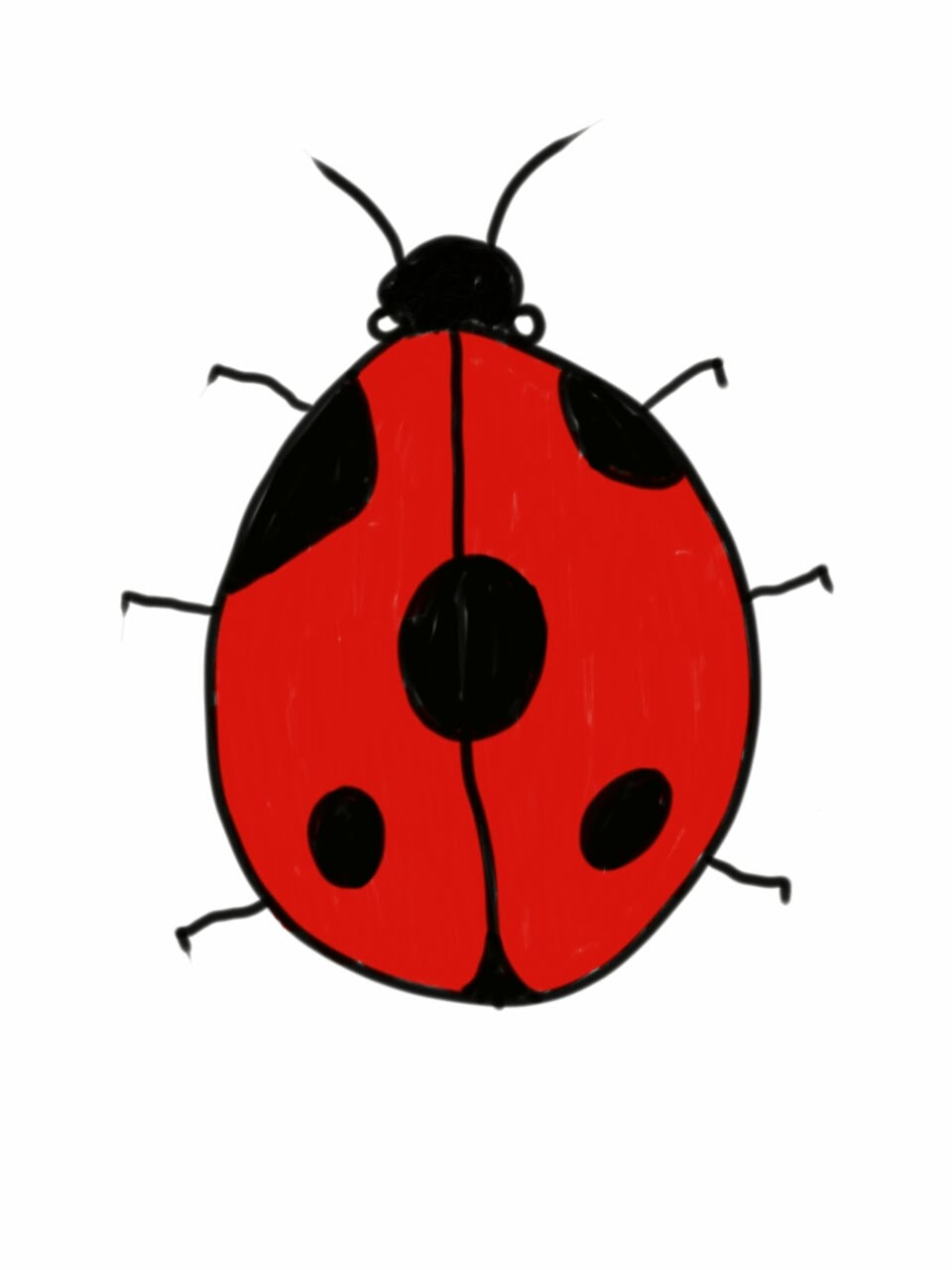 960x1280 How To Draw And Colour A Basic Ladybird (Ladybug)