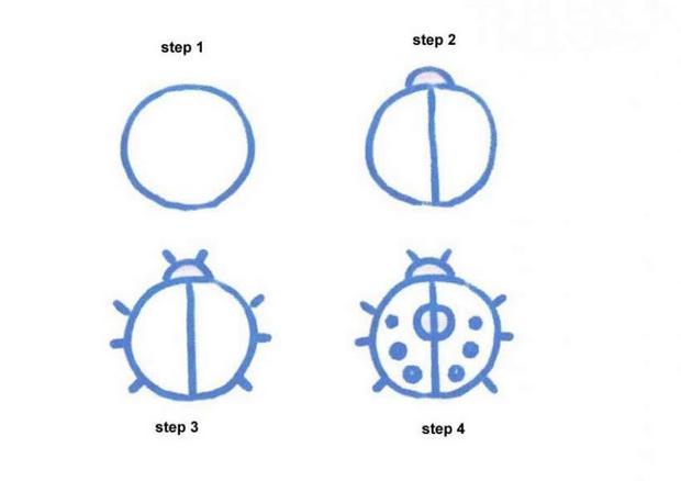 620x438 How To Draw How To Draw A Ladybug
