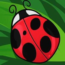 220x220 How To Draw How To Draw A Ladybug For Kids