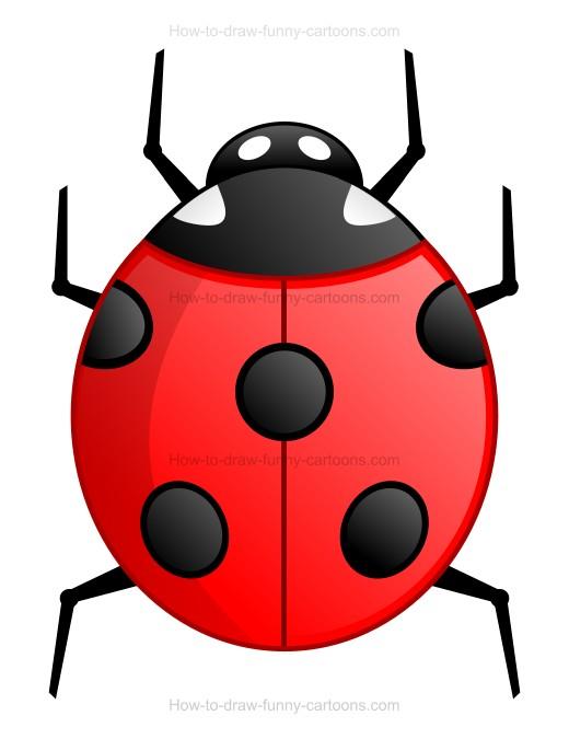 520x675 To Draw A Cartoon Ladybug