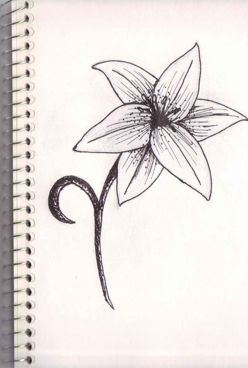 854x1268 Easy Drawing Of Lily Flower How To Draw Water Lily Easily