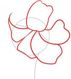 236x264 Dead Lily Flower