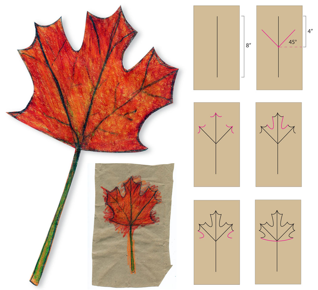 Easy Maple Leaf Drawing At Getdrawings Com Free For Personal Use