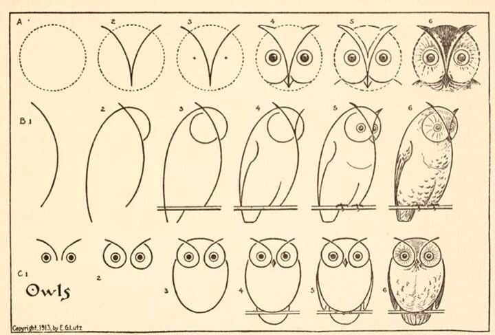 720x487 5 How To Draw Websites For Kids Owl Drawings, Owl And Drawings