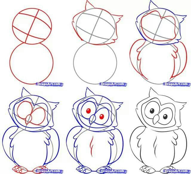 640x582 How To Draw Owls Art Owl, Drawings And Doodles