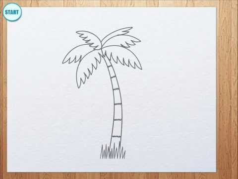 480x360 How To Draw Palm Tree For Kids