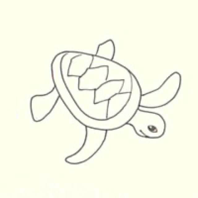 It is an image of Geeky Sea Turtle Drawing Simple