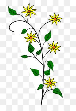 260x380 Free Download Flower Drawings A Simple Flower