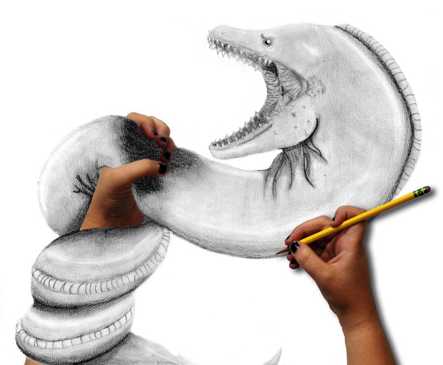 900x741 Killer Eel By Xxtragiccxx