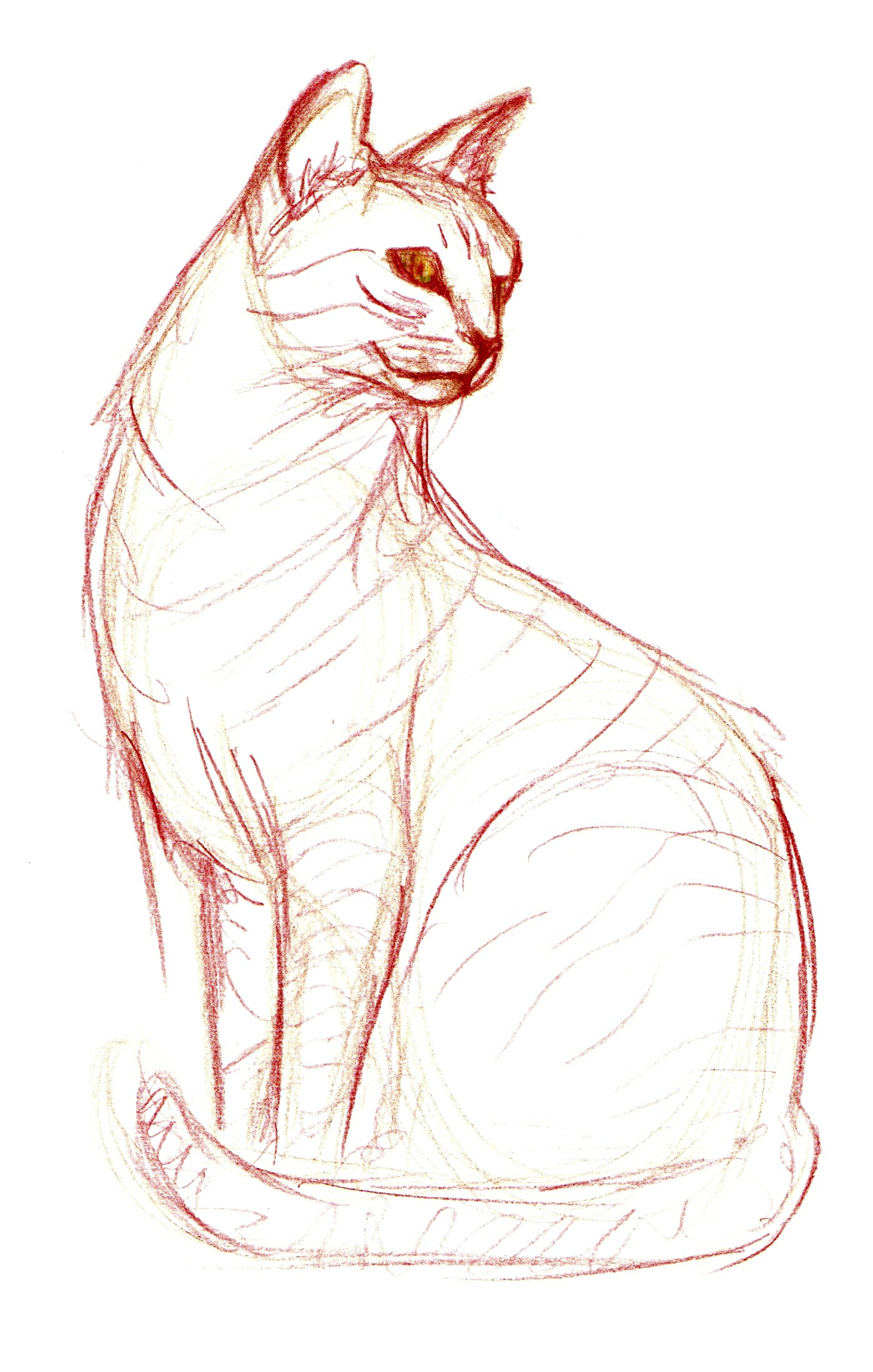 egyptian cat drawing at getdrawings com free for personal use