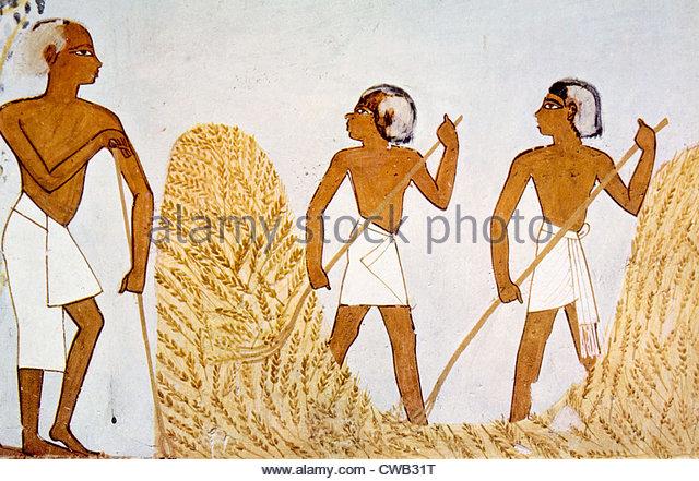 640x441 Ancient Egypt Farmer Stock Photos Amp Ancient Egypt Farmer Stock