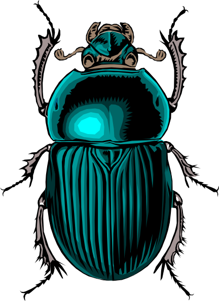 Egyptian Scarab Beetle Drawing at GetDrawings.com | Free for ...